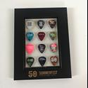 Picture of Framed Guitar Pick Set