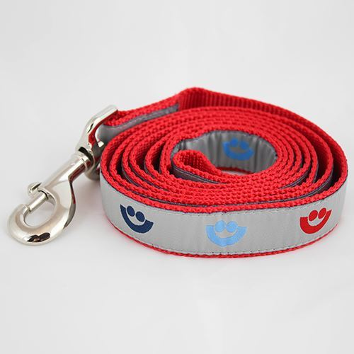 Picture of Silver Dog Leash